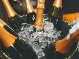 Champagne Tools Serve Chill Luxurious  jolservi