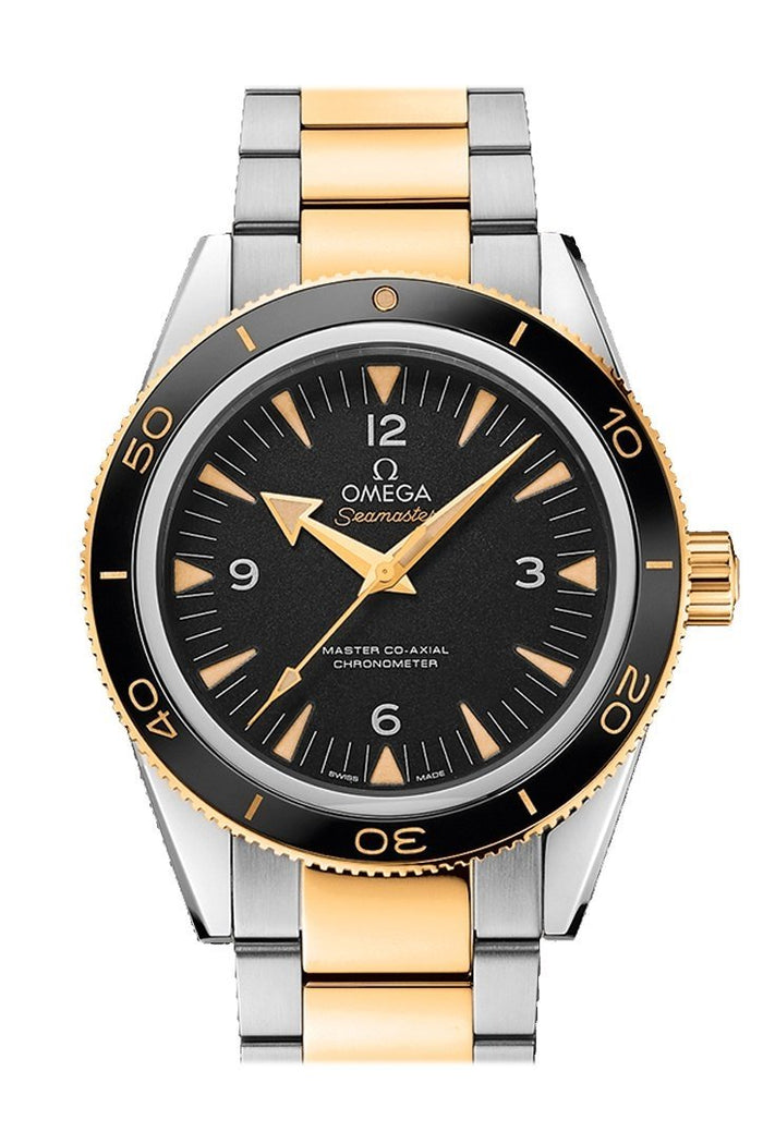 Omega Seamaster 300 Master Co-axial 41mm Automatic Black Dial Steel 18kt  Gold Watch 233.20.41.21.01.002
