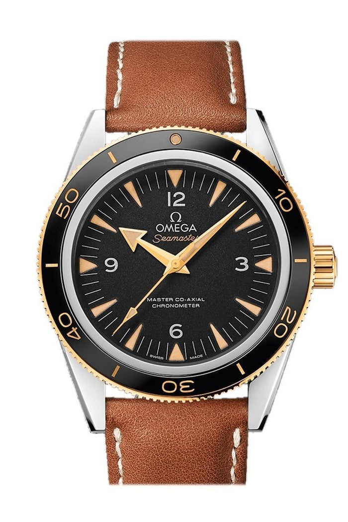 Omega Seamaster 300 Master Co-axial 41mm Automatic Black Dial 18kt  Gold Leather Men's Watch 233.22.41.21.01.001