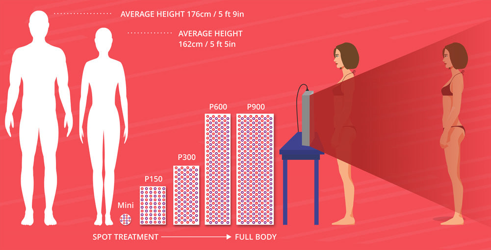 Derma Red sizes vs the average human body