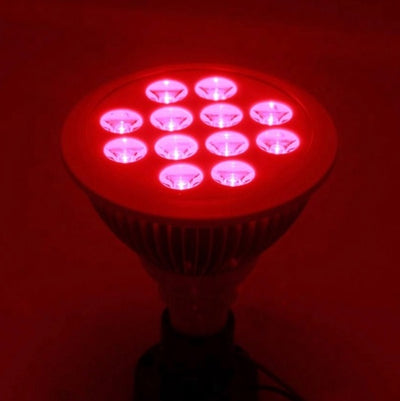 Derma Red Mini: Red & Near-Infrared Light Therapy Device