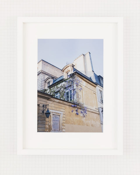 Paris Fleuri • Art Print