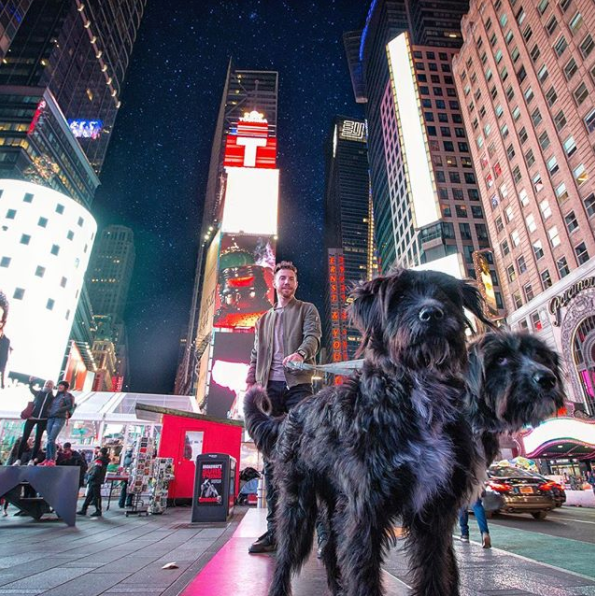 Puppies rescued from desert visit Times Square