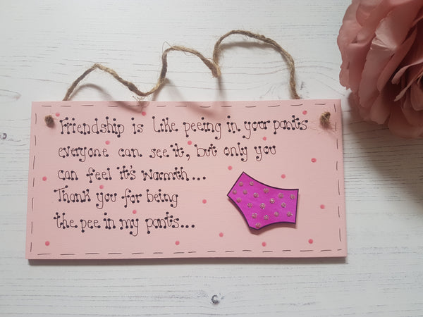 Friendship is like peeing in your pants... Funny friend quotation sign, plaque. - Fingers and Thumbs Crafts