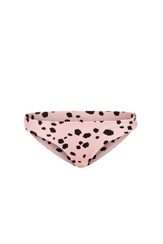 BASIC BRIEF IN DALMATIAN