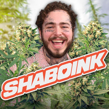 Load image into Gallery viewer, Post Malone's Shaboink Terpene-Infused Hemp Pre-Rolls
