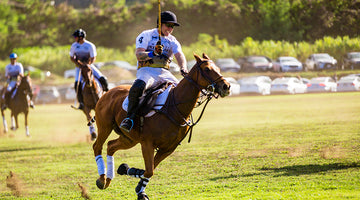 HPL Polo Jerseys In Action