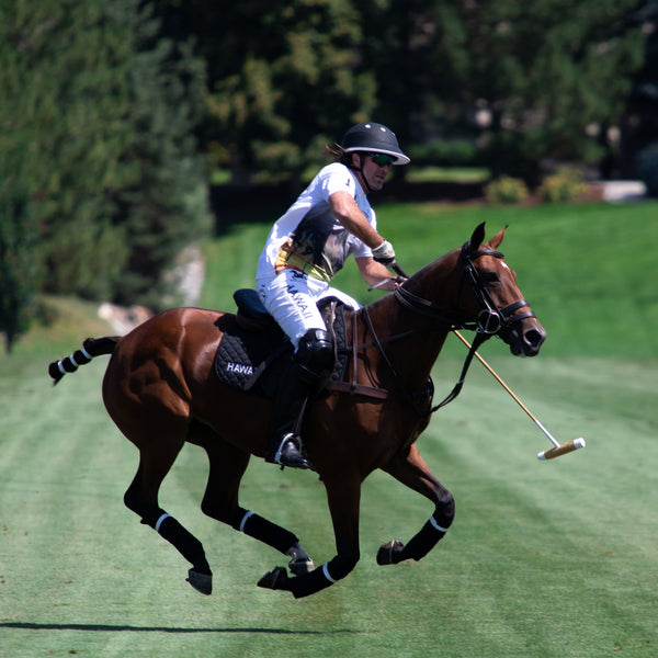 Chris Dawson repsenting Hawaii Polo Life in Denver, CO - Hawaii Polo Life - Horseplay