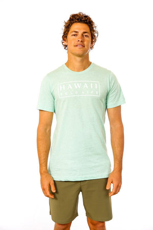 Boxed Logo Tee in Heather Prism Mint