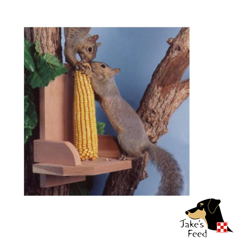 SQUIRREL PLATFORM FEEDER