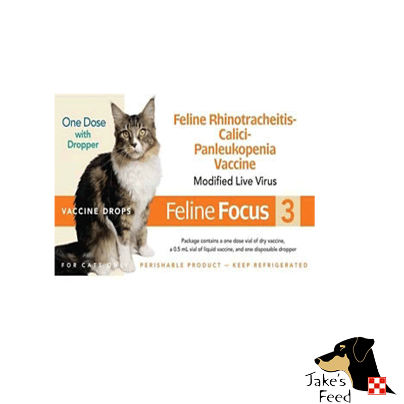 FELINE FOCUS 3 CAT VACCINE SINGLE DOSE