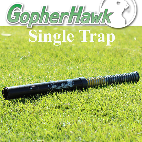 Gopher Hawk Single Trap