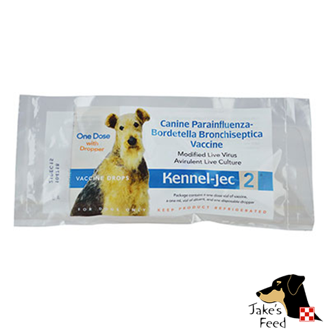 DURVET KENNEL-JEC INTRA-NASAL BORDATELLA VACCINE SINGLE DOSE