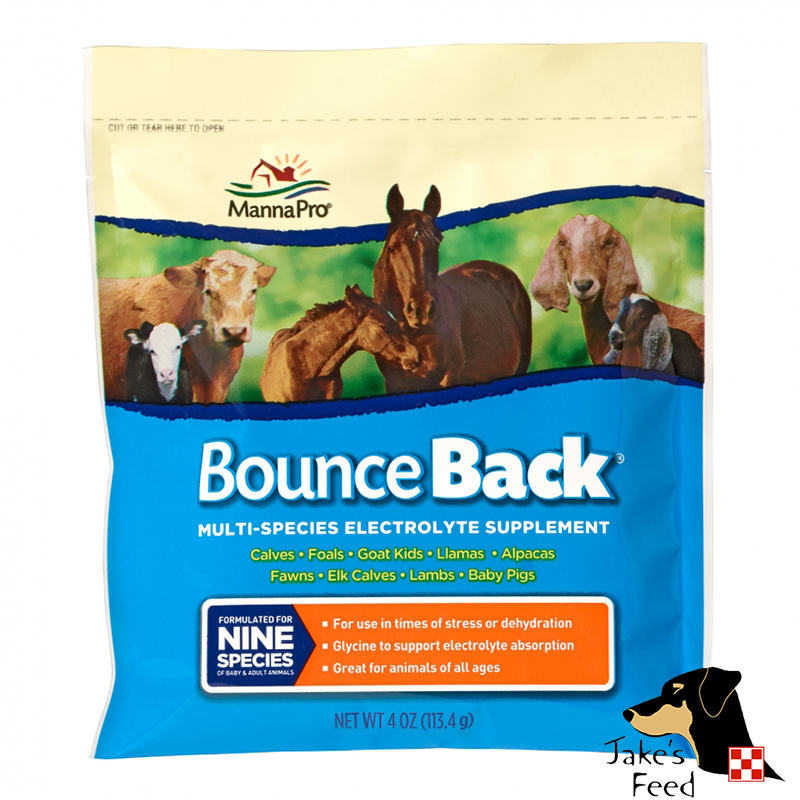 MANNA PRO BOUNCE BACK SINGLE 4 OZ.