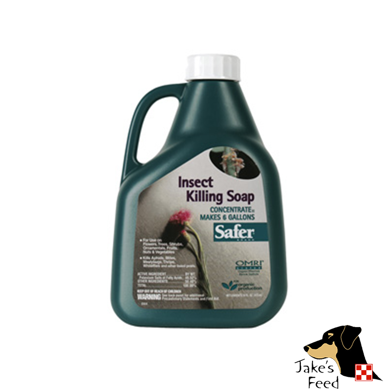 INSECT KILLING SOAP 16 OZ CONCENTRATE