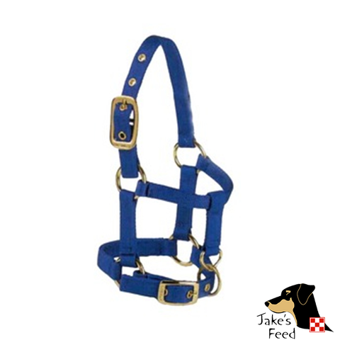 VALHOMA MINIATURE HORSE HALTER WITH ADJUSTABLE CHIN