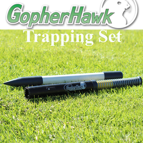 Gopher Hawk Trapping Set