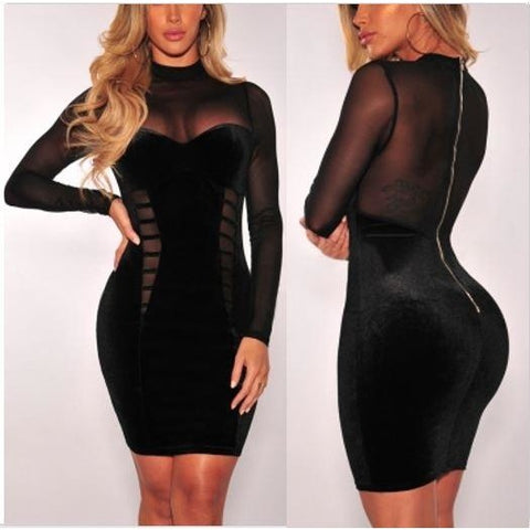 Sexy Mesh Dress with Sleeves