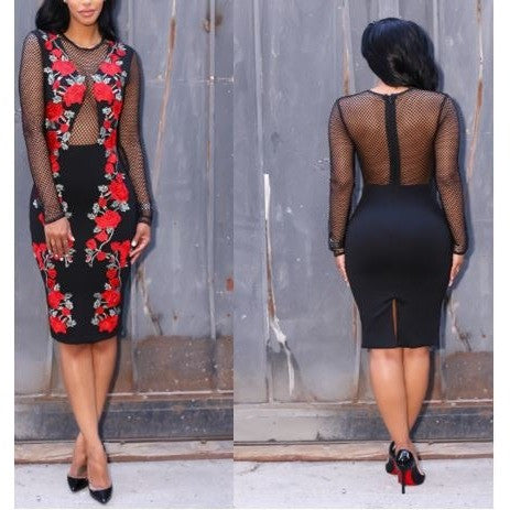 Red and Black Floral Mesh Dress