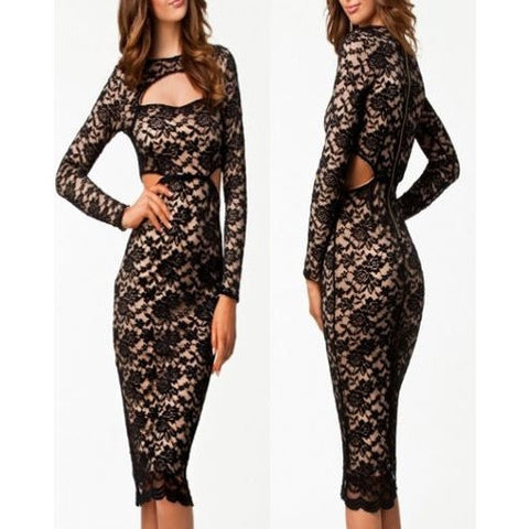 Classic Beauty Hollow out Lace Overlay Vintage Dress