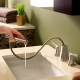 "American Standard bathroom sink faucet American Standard ""Green Tea"" Widespread Kitchen Faucet with Drain"