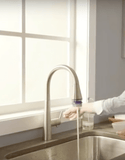 "American Standard kitchen faucet American Standard ""Edgewater"" Selectflo Pull-Down Kitchen Faucet"