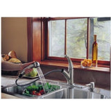 Delta kitchen faucet Delta Palo: Single Handle Pull-Out Kitchen Faucet with Soap Dispenser
