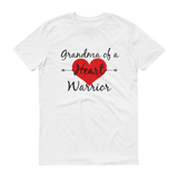 Grandnma of a Heart Warrior CHD Heart Defect Unisex Shirt - Choose Color - Sunshine and Spoons Shop