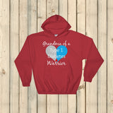 Grandma of a Type 1 Diabetes Warrior T1D Hoodie Sweatshirt - Choose Color - Sunshine and Spoons Shop