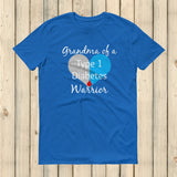 Grandma of a Type 1 Diabetes Warrior T1D Unisex Shirt - Choose Color - Sunshine and Spoons Shop