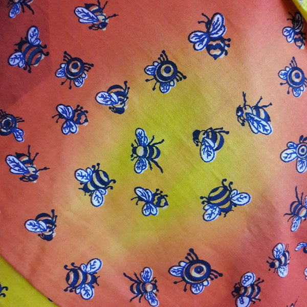 Adult Baggies \ Shorts - Busy Bee Design