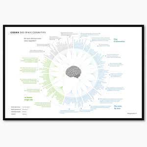 French translation - Framed Cognitive Bias Codex