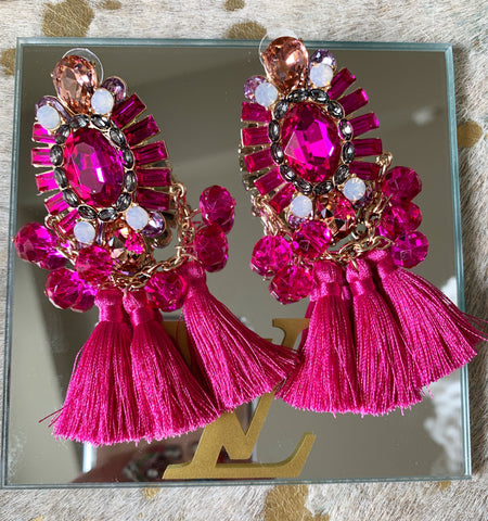 Hot Pink Statement Earrings