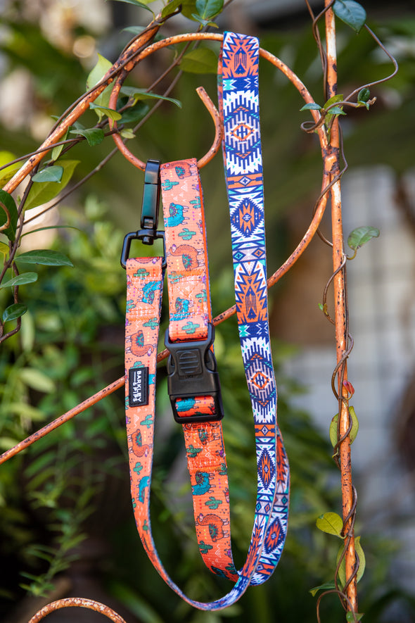 "B&P ""No Drama Llama"" Reversible leash - Barkley and Pips"