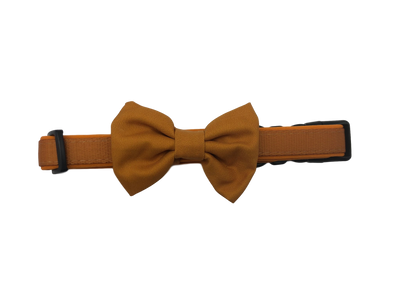 DOG COLLAR <br> & BOW TIE: <br> Caramel (NEW)