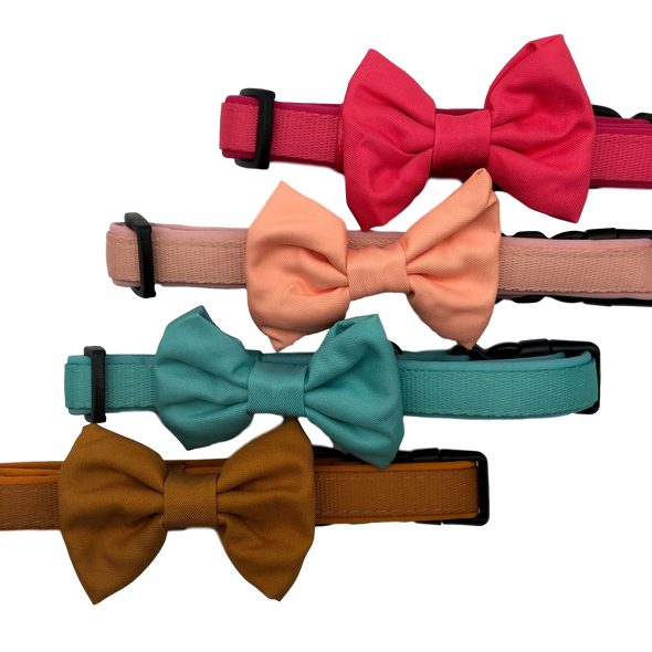 DOG COLLAR <br> & BOW TIE: <br> Hot Pink (NEW)
