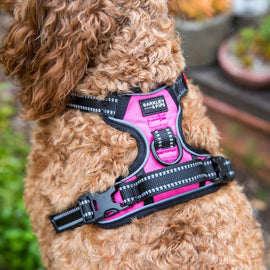 SPORTS HARNESS: <br> Pink <br> NEW!