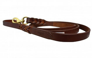 Angel Braided Leash - Barkley and Pips