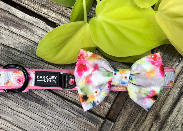 COLLAR & BOW TIE: <br>Pretty in Pink<br>NEW!