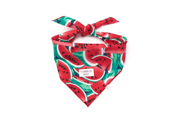 One In a Melon <br>The Bandana Love Project