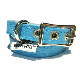 BUDDY BELT: Collar- Blue Leather