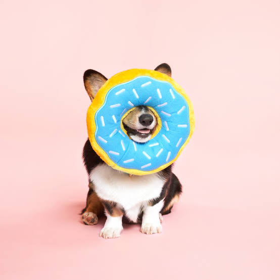 ZIPPY PAWS: Donutz Blueberry
