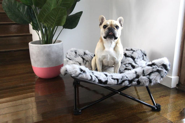 LUXURY DOG BED: <br> Nordic Butterfly Bed <br> NEW!