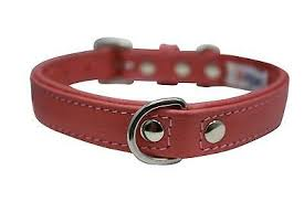 Angel Alpine (Plain Padded Leather Collar Collection) - Barkley and Pips