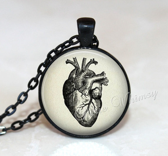 ANATOMICAL HEART Necklace, Anatomical Heart Pendant, Anatomical Heart Keychain, Heart Necklace, Heart Jewelry, Vintage Medical Illustration