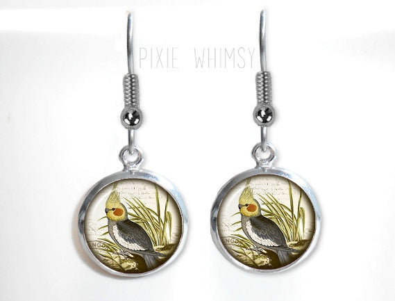 COCKATIEL Earrings, Cockatiel Parrot Dangle Drop Earrings Bird Glass Dome Photo Art Nature Jewelry Gift for Bird Lover Owner, Exotic Bird