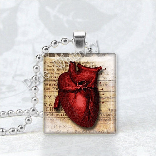 ANATOMICAL HEART VIntage Illustration Scrabble Tile Art Pendant Charm