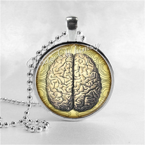 BRAIN Pendant Necklace Jewelry Antique Vintage Anatomical Illustration Anatomy Medical Jewelry