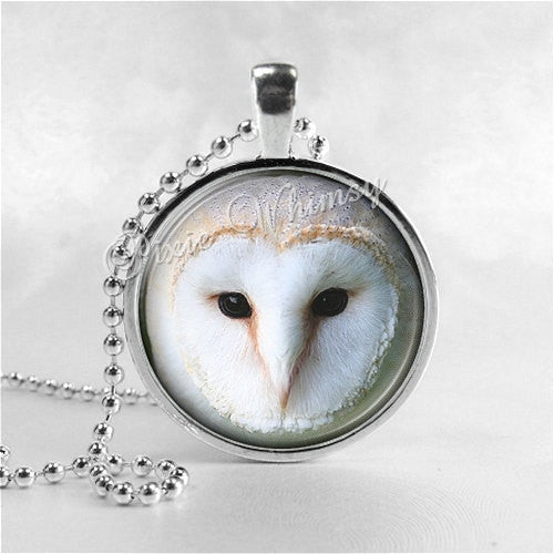 BARN OWL Necklace, Owl Necklace, Owl Jewelry, Owl Pendant, Owl Charm, Bird Necklace, Bird Pendant, Bird Charm, Glass Photo Art Necklace