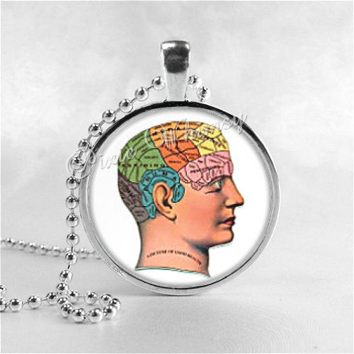 Phrenology Necklace Art Pendant Jewelry with Ball Chain, Human Brain, Skull, Science, Phrenologist